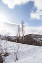 Nature in the Tien Shan mountains in winter. Kazakhstan