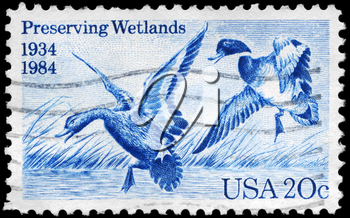 Royalty Free Photo of 1984 US Stamp Shows Mallards Dropping In by Jay N. Darling, 50th Anniversary of Waterfowl Preservation Act