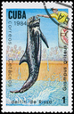 CUBA - CIRCA 1984: A Stamp printed in CUBA shows image of a Risso's Dolphin with the description