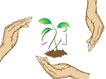 Royalty Free Clipart Image of People Holding a Plant