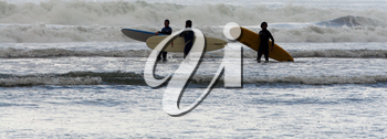Royalty Free Photo of Surfers in the Ocean
