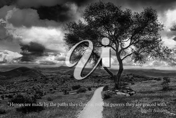 Royalty Free Photo of a Tree and Lane With an Inspirational Quote