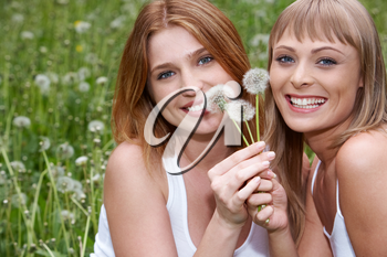 Portrait of two charming girls with dandelions in green grass