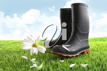Royalty Free Photo of Rubber Boots and a Daisy on the Lawn