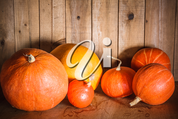 Pumpkins on grunge wooden backdrop, background table. Autumn, halloween, pumpkin, copyspace