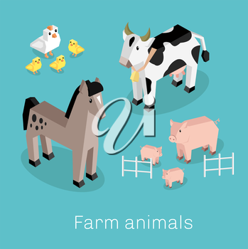 Farm animal set isometric 3d design. Cow and pig, sheep and chicken, farm animals, nature 3d natural livestock animal, fauna animal mammal, healthy character vector illustration