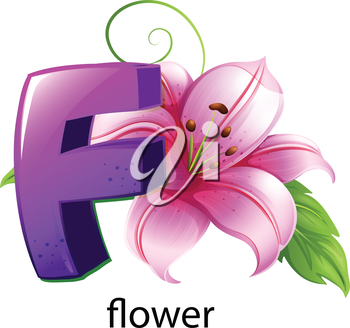 lllustration of a flower and a letter F on a white background