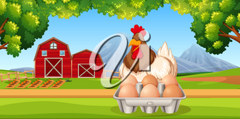 Chicken with eggs farm scene illustration