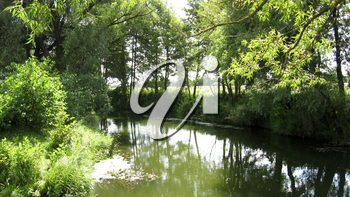Landscape on a background of the river