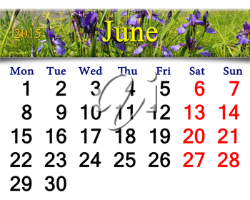 calendar for May of 2015 year on the background of blossoming iris