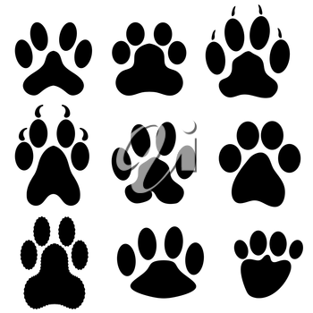 Paw Prints Silhouettes Isolated on White Background