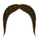 Brown Hairy Mustache Isolated on White Background