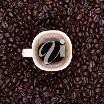 Coffee cup on coffee beans background