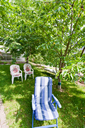 folding chair on backyard in green garden