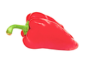 Red ripe sweet pepper taken closeup isolated on white background.