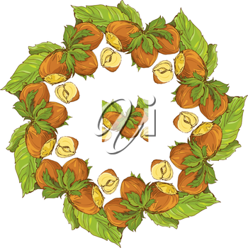 Circle ornament with highly detailed hand drawn hazelnuts isolated on white background. Pattern endless fragment.