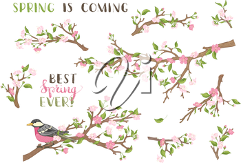 Blossoms, leaves and bird on tree branches. Hand-written brush lettering. Best spring ever! Spring is coming.