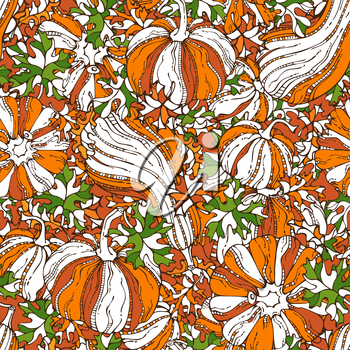 Set of various pumpkins and leaves. Thanksgiving day. Harvest time. Boundless background for your autumn design. Bright orange, green and white template.