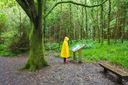 Hiker in the rain looking at description sigh in the  forest on a rainy day wearing a yellow raincoat and red rubber  wellington boots