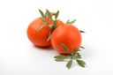 two orange pumpkins and sprigs of sage on white background