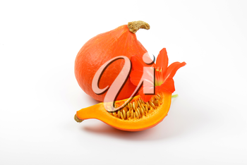 orange pumpkins and hibiscus flower on white background