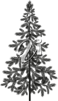 Christmas spruce fir tree black silhouette isolated on white background. Vector
