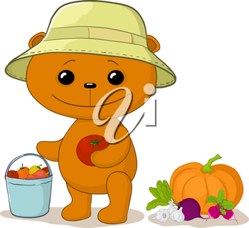 Cartoon teddy bear gardener with a crop of vegetables. Vector