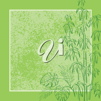 Exotic background, contour bamboo plants, frame and abstract grunge pattern. Vector