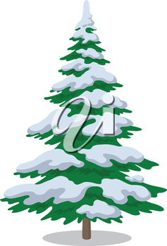Christmas fir tree with snow, holiday winter symbol, isolated on white. Vector