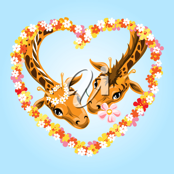 Pair of giraffes during romantic date in the flower wreath drawn in cartoon style.