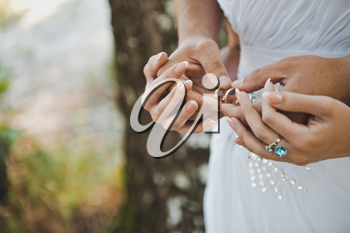 Embraces of hands of the newly-married couple with wedding rings in them.