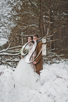 Portrait of the bride and groom around fallen trees overgrown with pine forest.
