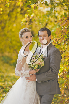 Portrait of a beautiful married couple on the autumn background bright forest.