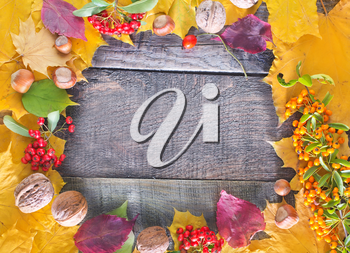 autumn harvest on wooden background,autumn background