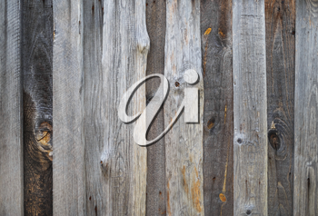 Weathered wooden texture. Rustic wood planks background.