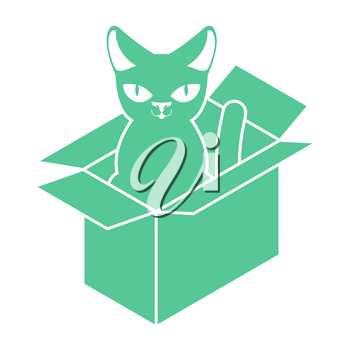 Cat in box isolated. Pet in cardboard box. vector illustration