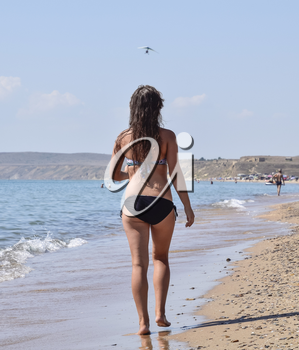 Girl walking on the beach, rear view. Walk the dark-haired woman in a swimsuit along the coastline on the sea beach.