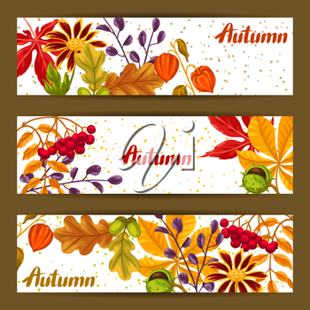Banners with autumn leaves and plants. Design for advertising booklets, banners, flayers, cards.