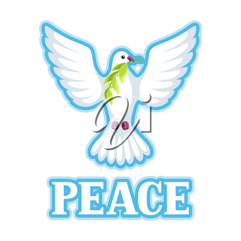 White dove of peace bears olive branch.