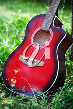 Guitar in forest. Element of design.