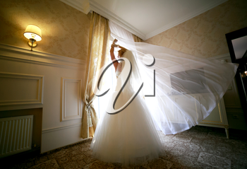 Wedding concept feelings and emotions. Beautiful and elegant a bride standing near a window
