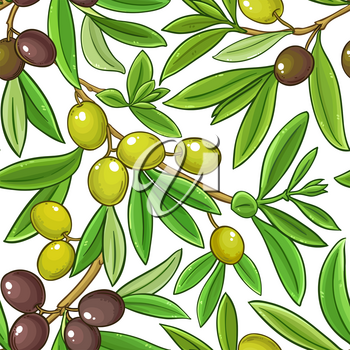 olive fruits vector pattern on white background