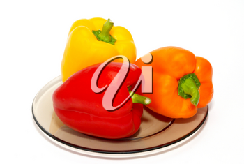 Three colored paprika on the plate on white background.