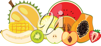 Tropical Fruit on White Background illustration