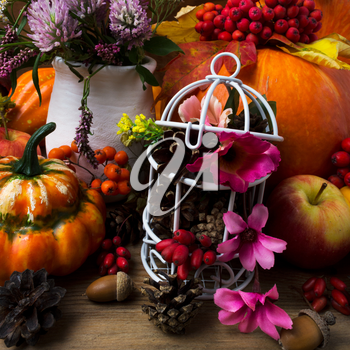Thanksgiving centerpiece with pumpkins, apples, white birdcage, cones and pink flowers