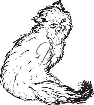 Grunge sketch of a cute Persian cat, abstract illustration.