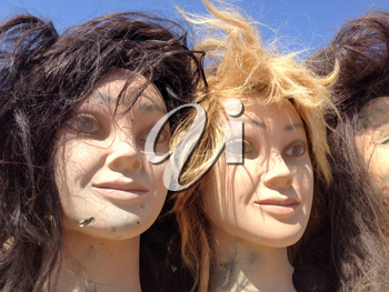 Female mannequin plastic fake toy heads with hair outdoor